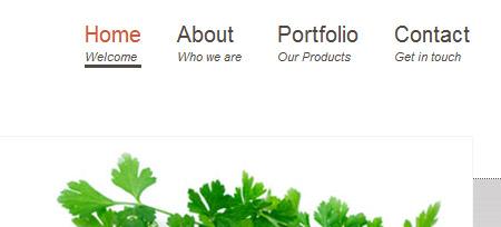 Screenshot der Webseite www.emea-c-g.com