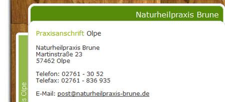 Screenshot der Webseite www.naturheilpraxis-brune.de